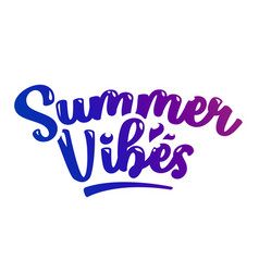 summer vibes lettering vector image