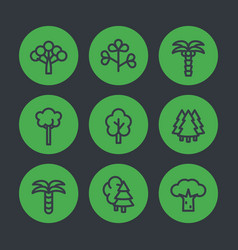 trees line icons palms firs baobab eucalyptus vector image