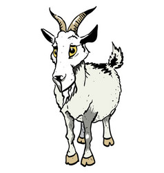 Cartoon image of goat vector
