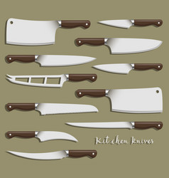 kitchen knife weapon steel vector image