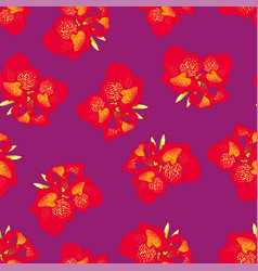 Red canna lily on purple background vector