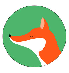 red fox with closed eyes on white background vector image