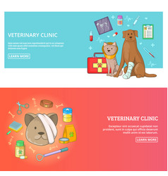 veterinary clinic horizontal banner set concept vector image