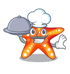 Chef with food starfish isolated with in the vector