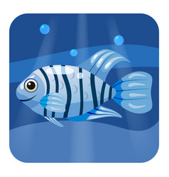 cute beautiful blue tropical fish on sea vector image