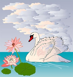 Graceful and graceful Swan vector