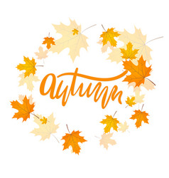 handwriting word autumn vector image