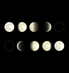 moon phases on black background vector image
