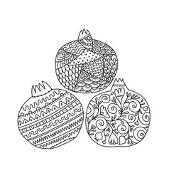 Pomegranates ornate sketch for your design vector