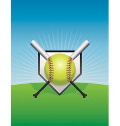 Softball and Bats vector image