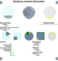 Blueberry nutrient information vector