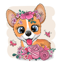 Cartoon corgi with flowers on a white background vector