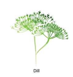 Dill icon vector image