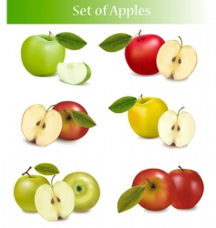 Set apples vector