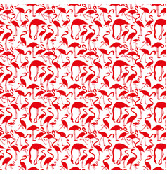 silhouettes flamingos on white background vector image