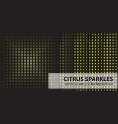 Square pattern set citrus sparkles seamless vector