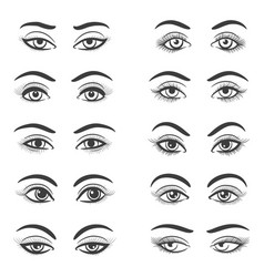 Beautiful female eyes set vector