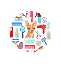 grooming tools and dog vector image