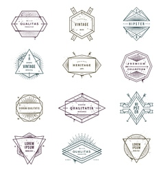 set grunge hipster signs and emblems vector image