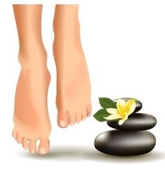 SPA concept with realistic female feet frangipani vector
