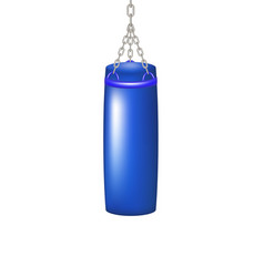 punching bag for boxing in blue design vector image vector image