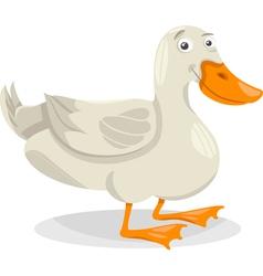 duck farm bird cartoon vector image