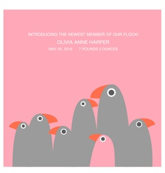 birth announcement with funny birds vector image vector image