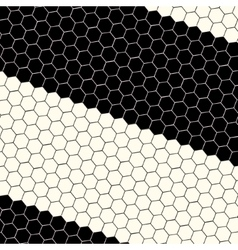 Abstract science hexagon background vector image