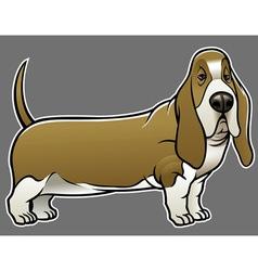 Basset hound dog vector
