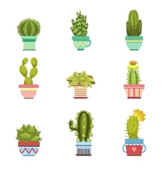 Cactus In Pot Collection vector image