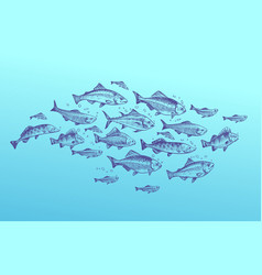 Fish school fishes group hand drawn sketch vector