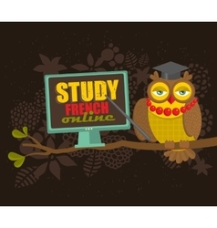 Owl on the tree Study French concept vector image