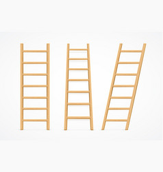 realistic detailed 3d wooden ladder set vector image