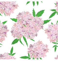 pink flowers pattern on white background vector image