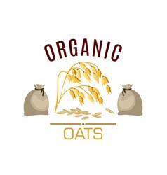 oat cereal poster or emblem vector image