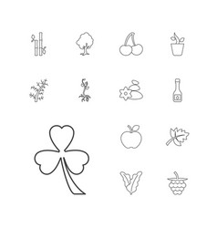 13 leaf icons vector