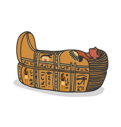 ancient egyptian sarcophagus for pharaons mummy vector image