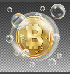 bitcoin in soap bubble investment risk vector image