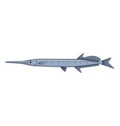 Flat needlefish fish on a white background vector