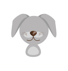 head cute dog animal image vector image