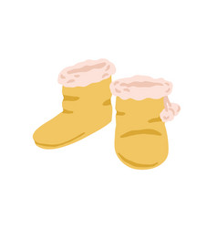 Pair closed winter slipper boots with fur line vector