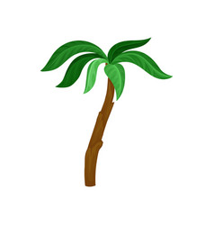 Palm tree with bright green leaves and brown trunk vector