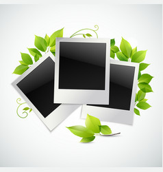 Photo frames with green leaves vector