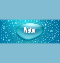 realistic water drops template for water vector image