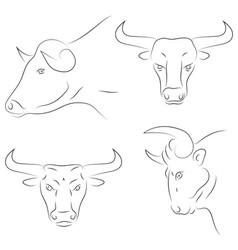 set of black line bull heads on white background vector image