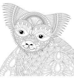 zentangle happy friendly koala for adult anti vector image