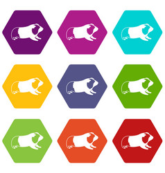 Hamster icon set color hexahedron vector