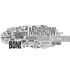 Marrow word cloud concept vector
