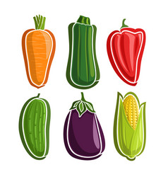 Set vegetables vector