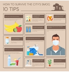 Smog infographic How to vector
